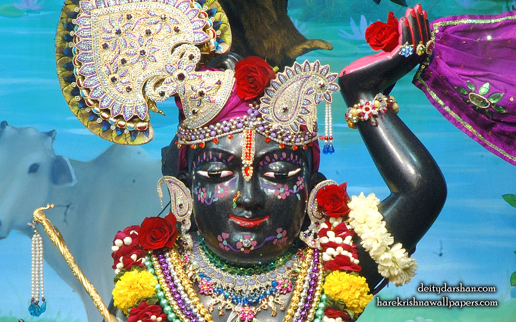 Sri Gopal Close up Wallpaper (065) Size 1680x1050 Download