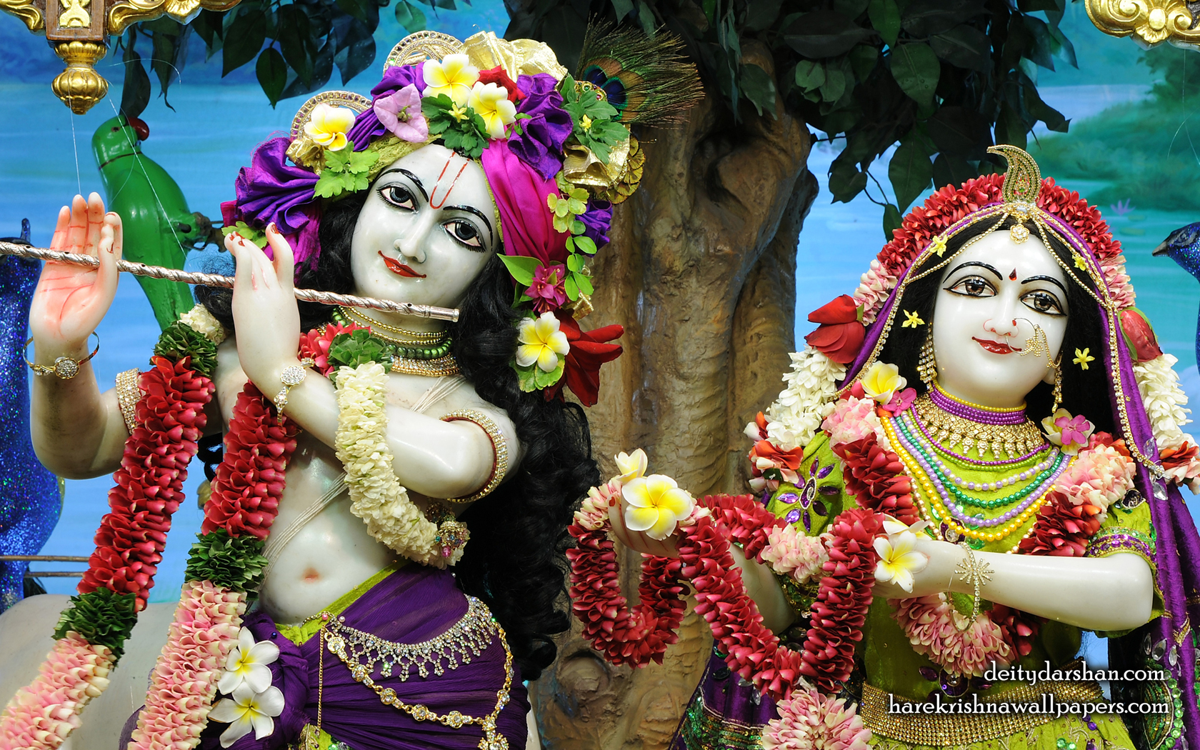 Sri Sri Radha Gopinath Close up Wallpaper (065) Size 1680x1050 Download