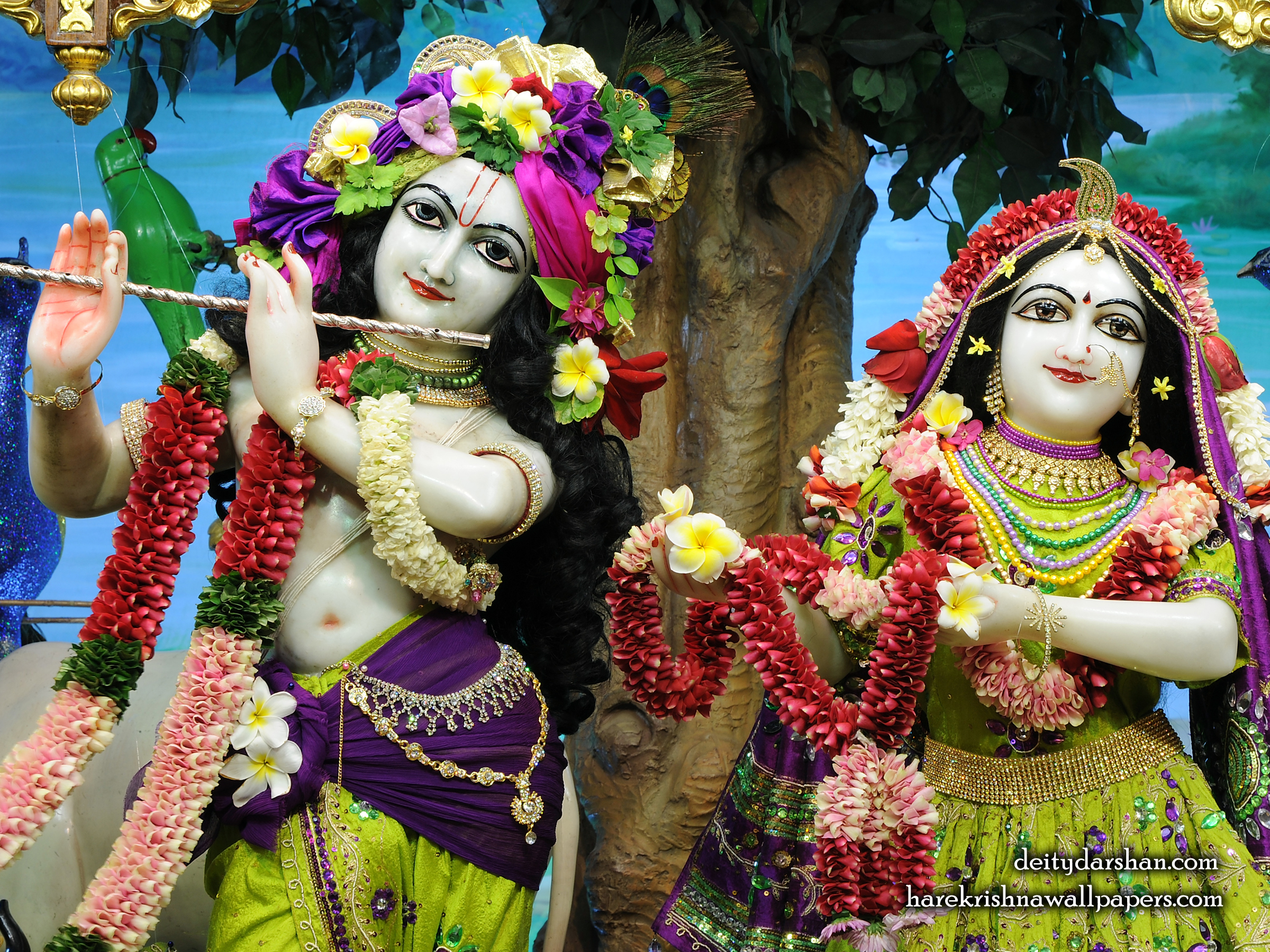 Sri Sri Radha Gopinath Close up Wallpaper (065) Size 2400x1800 Download