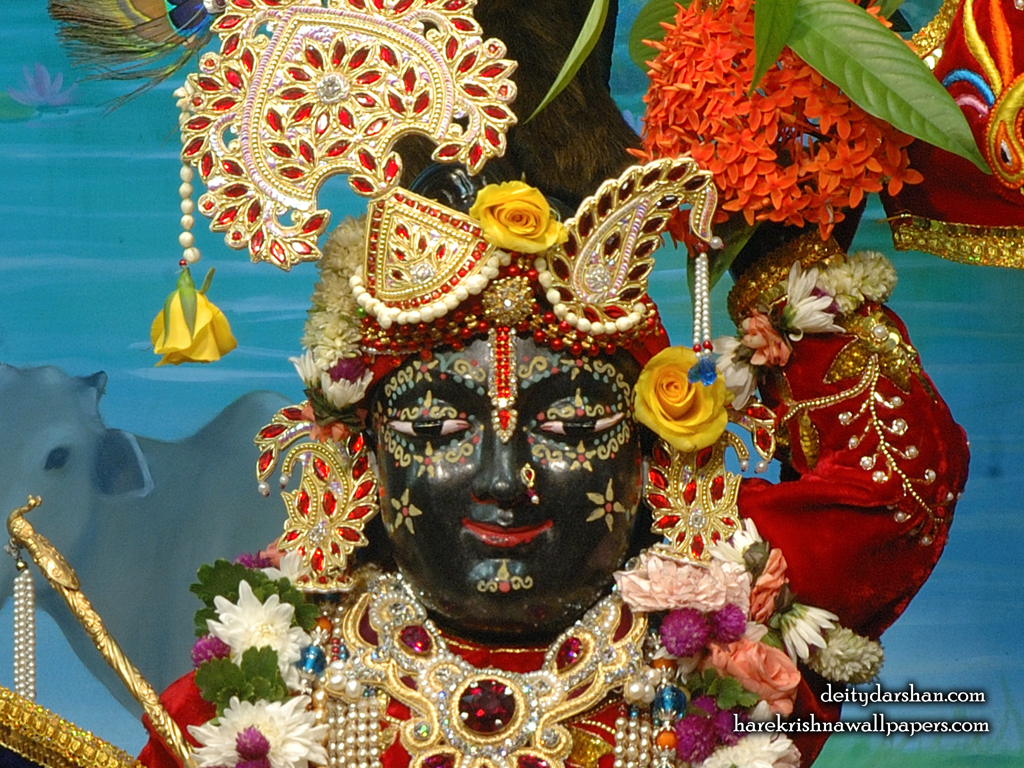 Sri Gopal Close up Wallpaper (066) Size 1024x768 Download