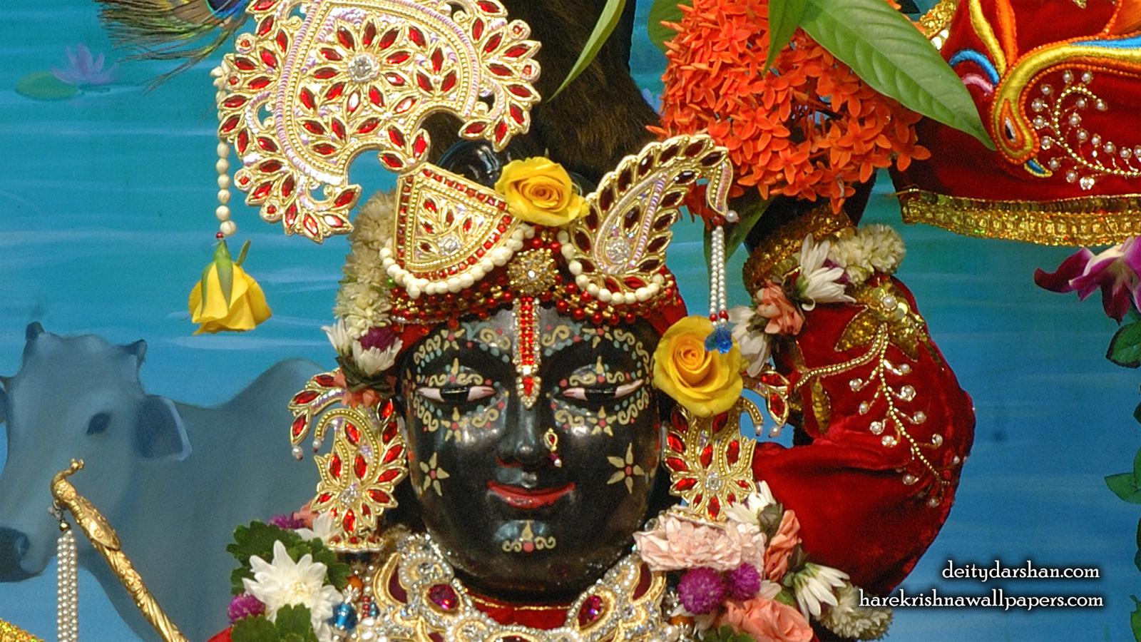 Sri Gopal Close up Wallpaper (066) Size 1600x900 Download