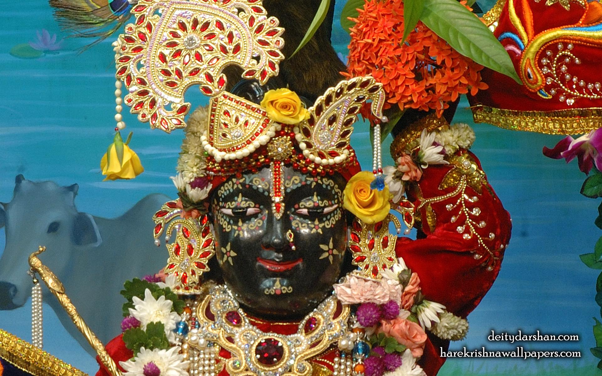 Sri Gopal Close up Wallpaper (066) Size 1920x1200 Download
