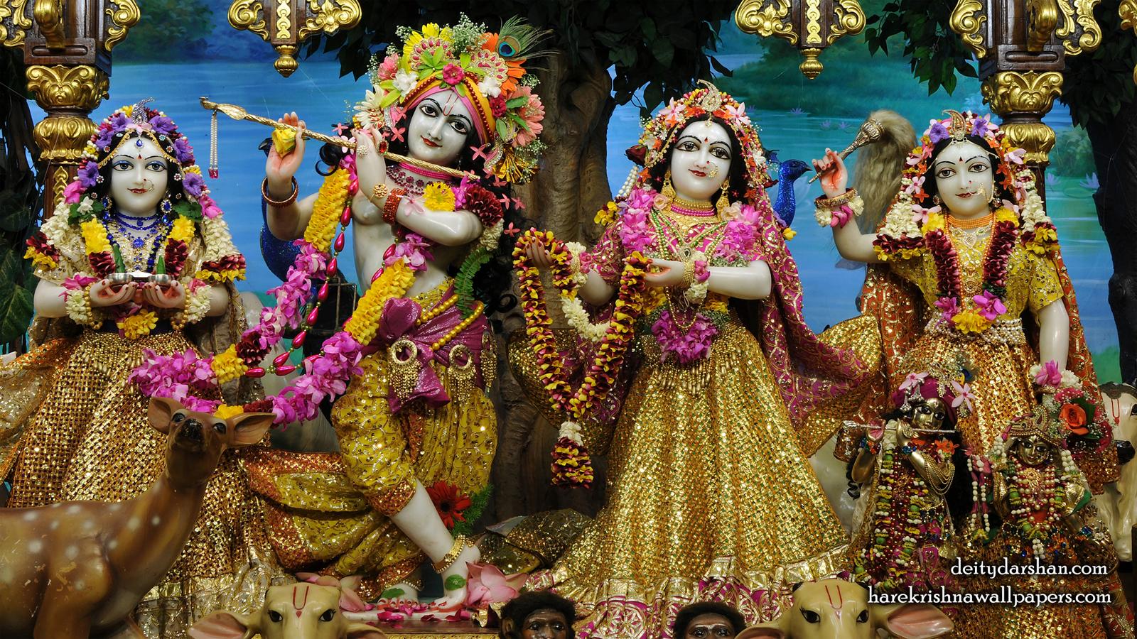 Sri Sri Radha Gopinath Lalita Vishakha Wallpaper (066) Size 1600x900 Download