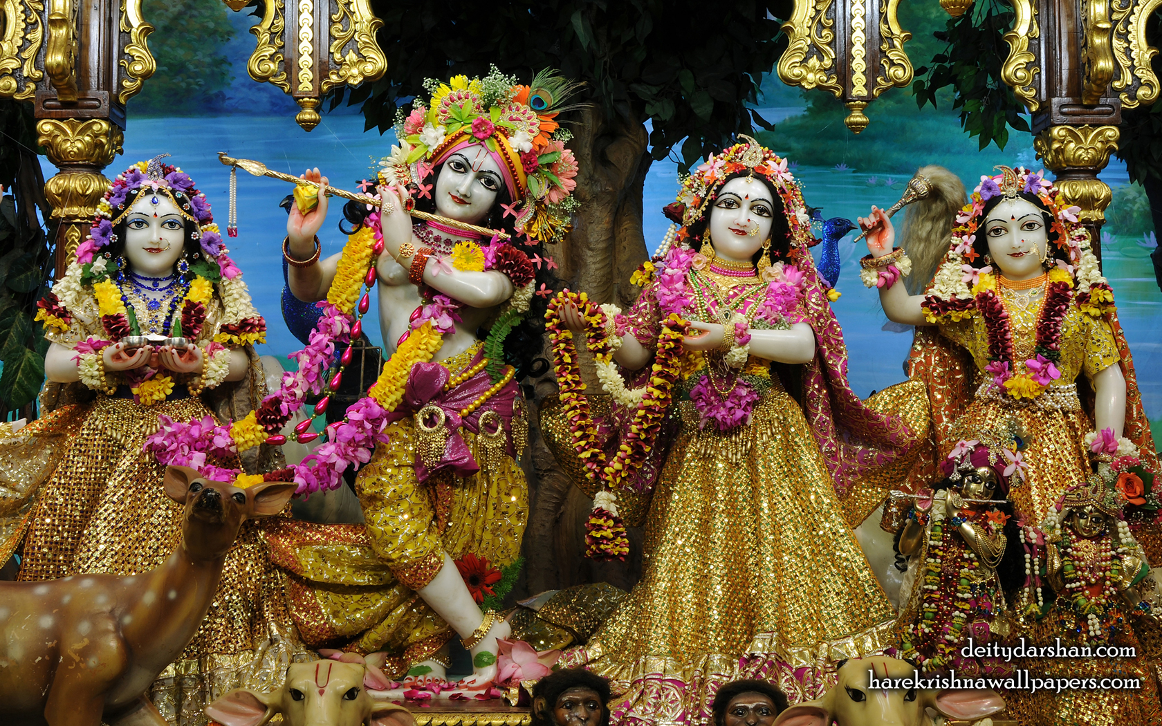 Sri Sri Radha Gopinath Lalita Vishakha Wallpaper (066) Size 1680x1050 Download
