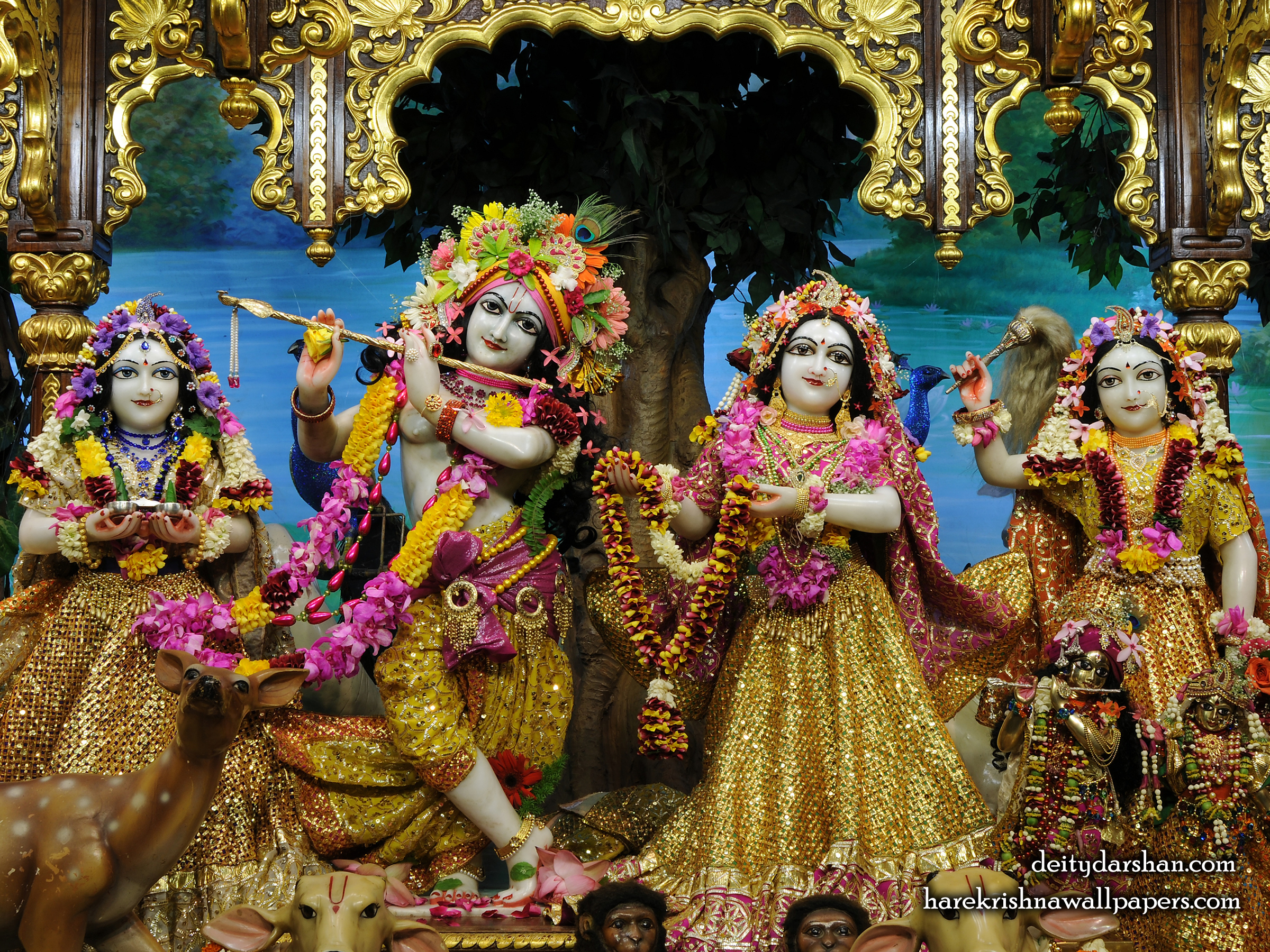 Sri Sri Radha Gopinath Lalita Vishakha Wallpaper (066) Size 2400x1800 Download