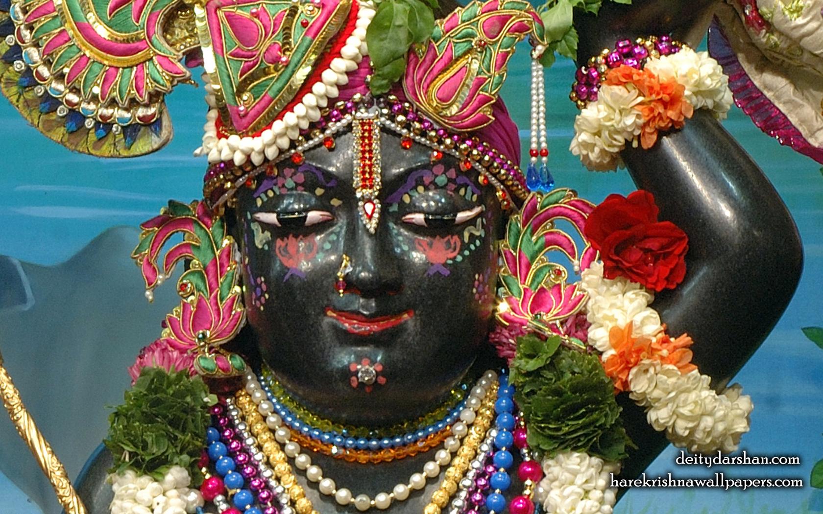Sri Gopal Close up Wallpaper (067) Size 1680x1050 Download