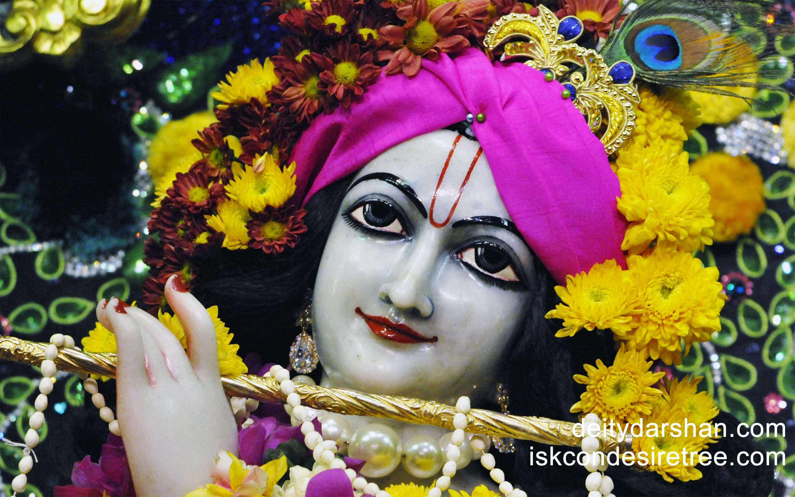 Sri Gopinath Close up Wallpaper (067) Size 2560x1600 Download
