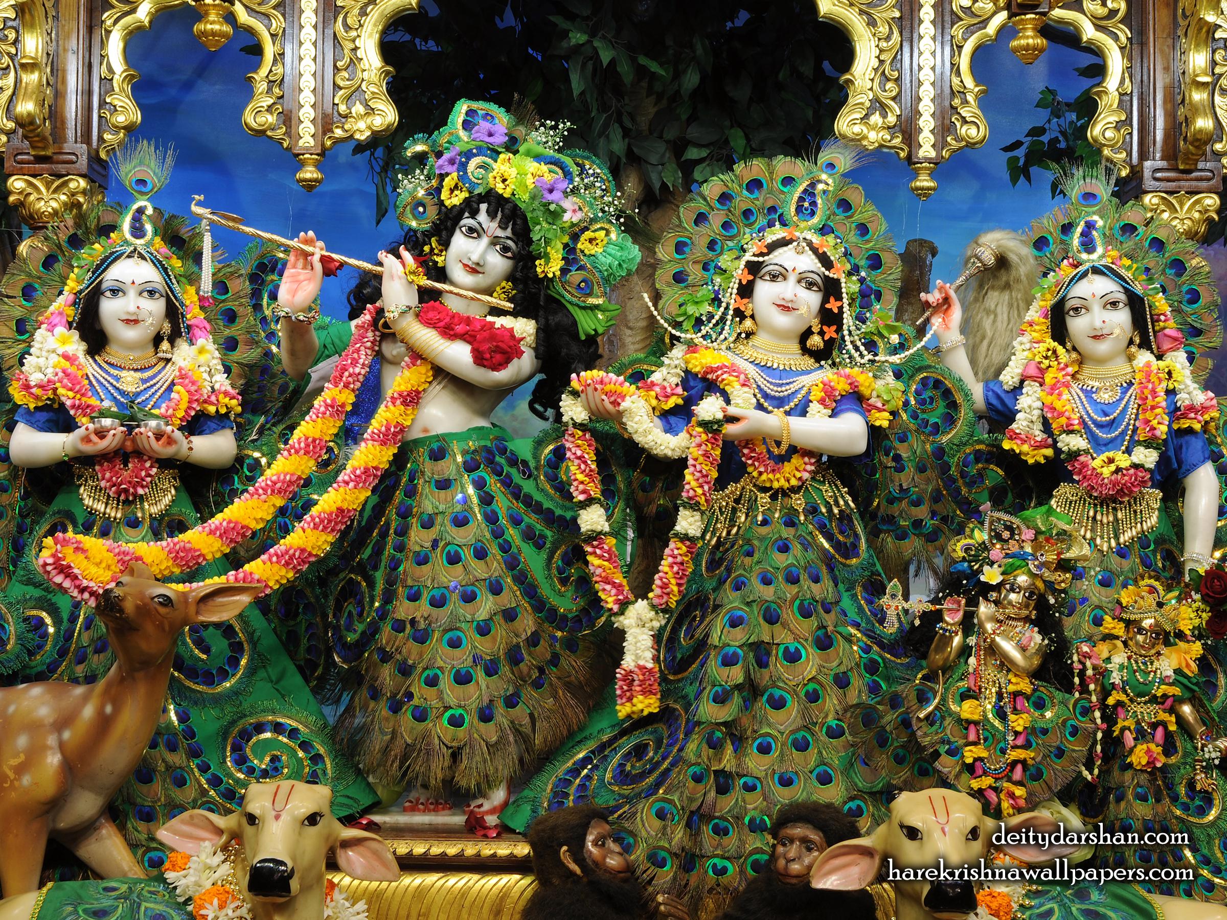 Sri Sri Radha Gopinath Lalita Vishakha Wallpaper (067) Size 2400x1800 Download