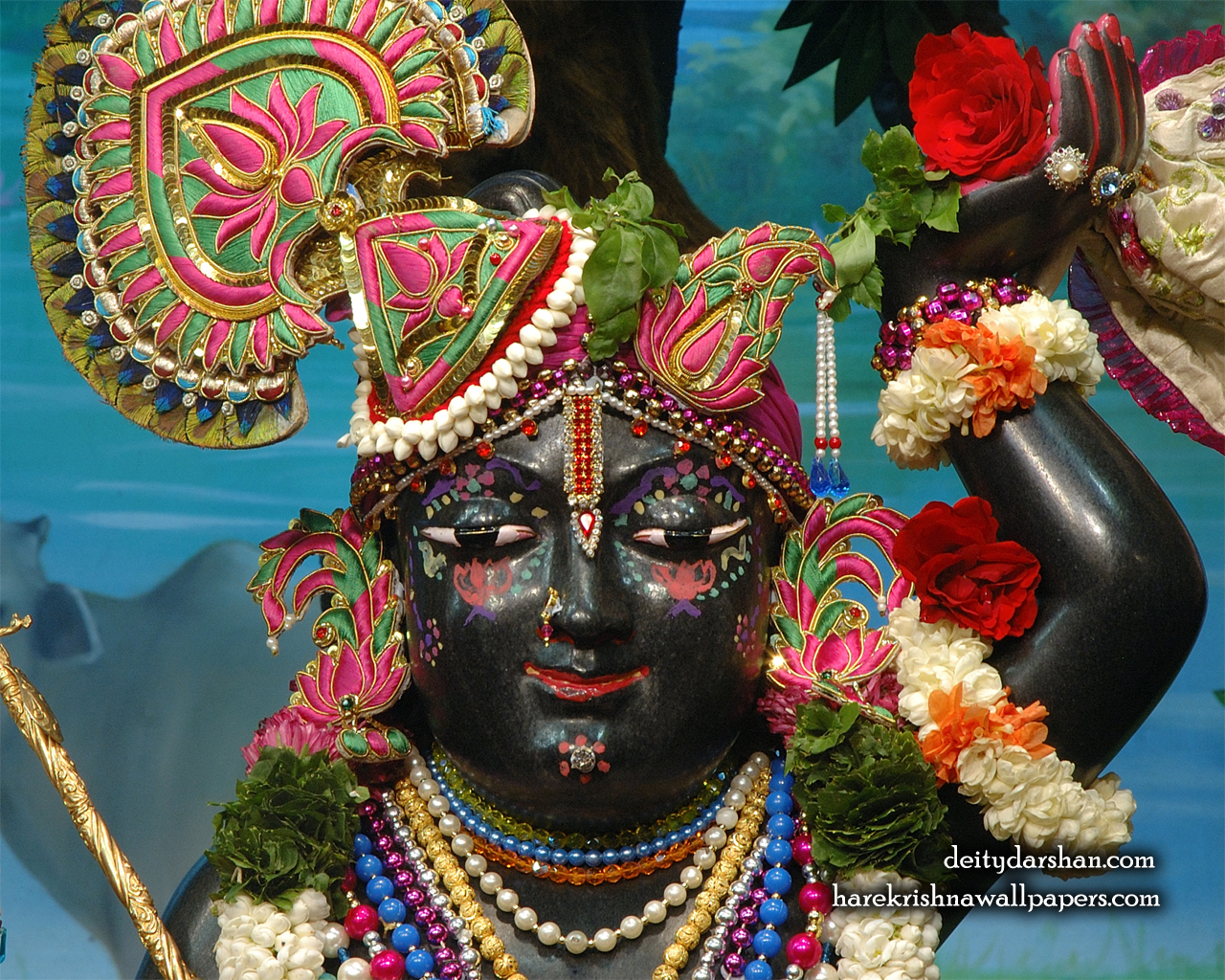Sri Gopal Close up Wallpaper (068) Size 1280x1024 Download