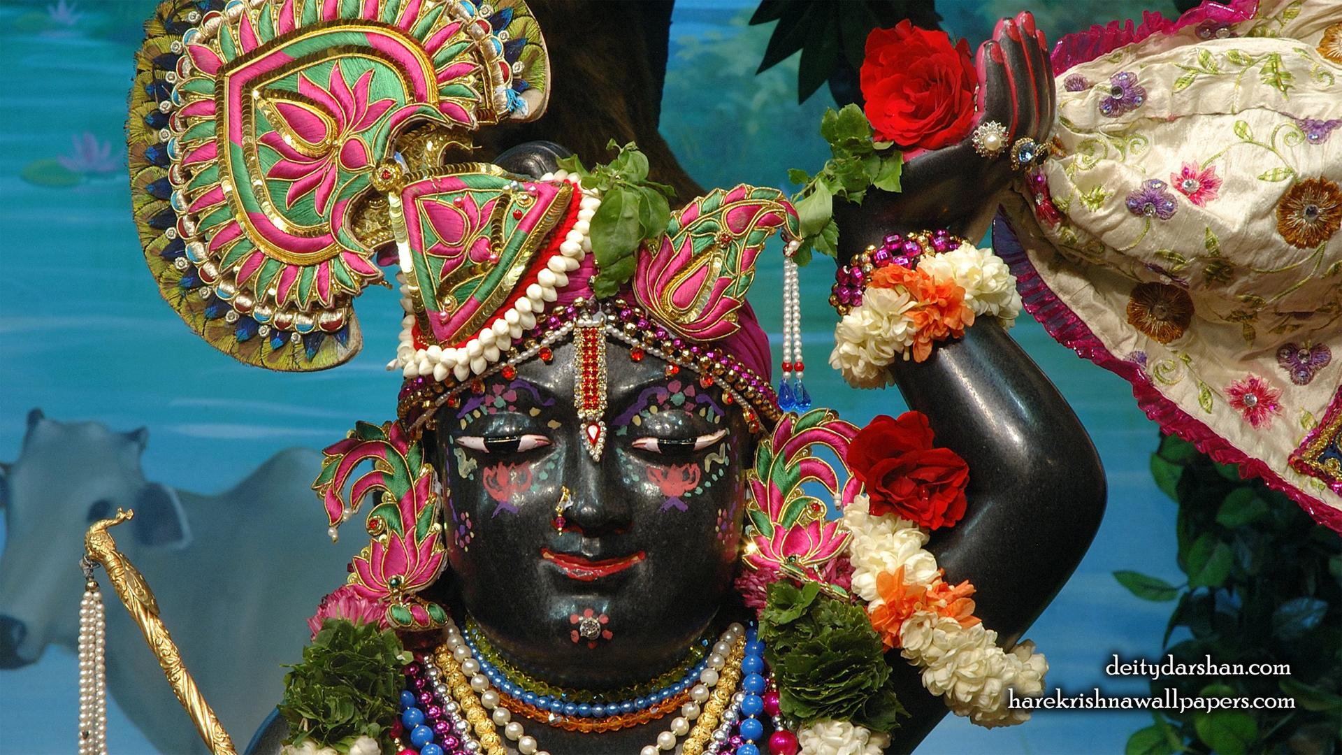 Sri Gopal Close up Wallpaper (068) Size 1920x1080 Download
