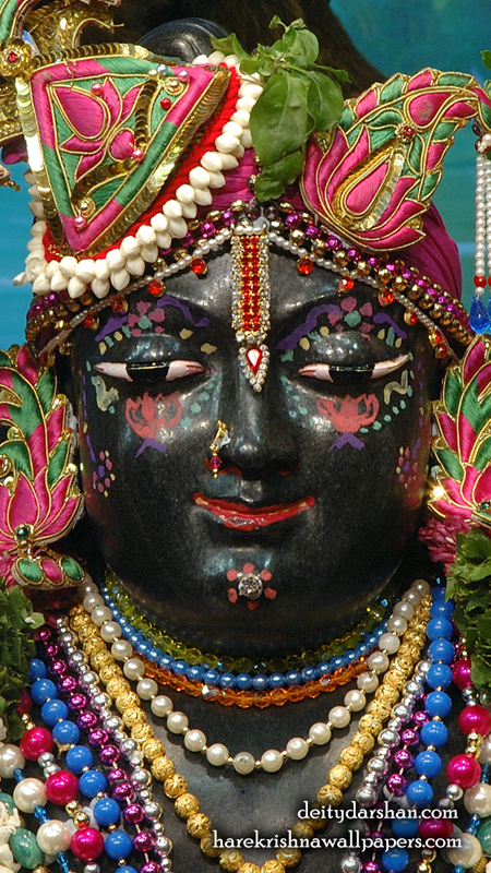 Sri Gopal Close up Wallpaper (068) Size 450x800 Download