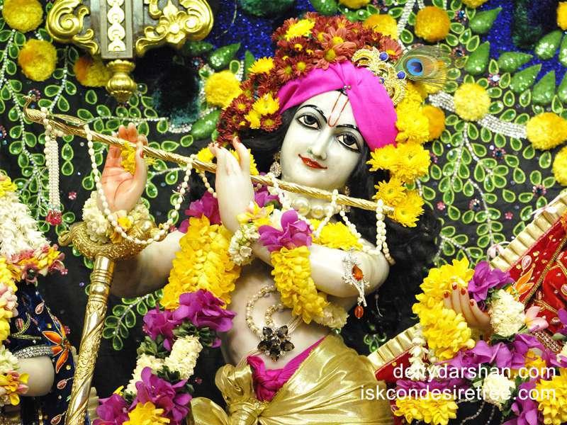 Sri Gopinath Close up Wallpaper  (068)