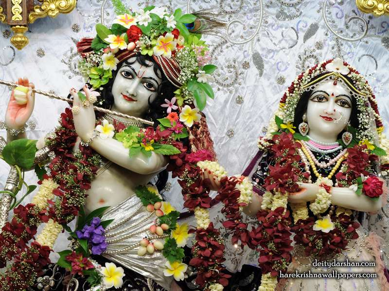Sri Sri Radha Gopinath Close up Wallpaper (069)