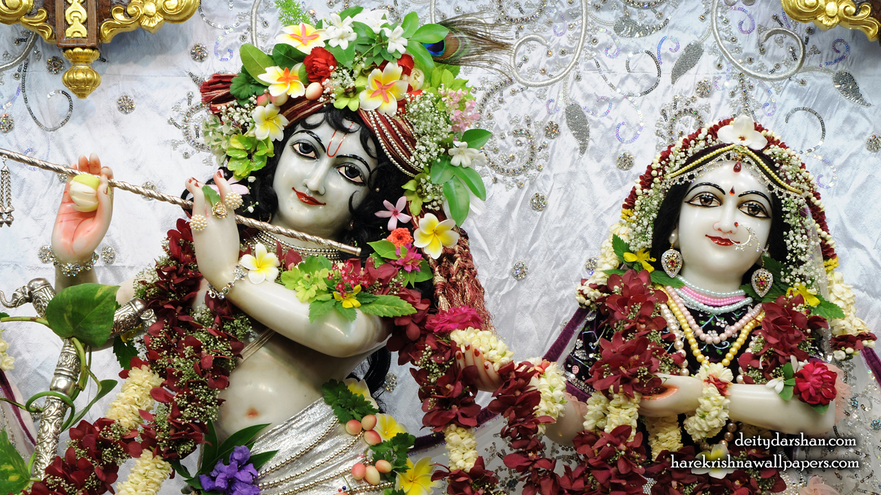 Sri Sri Radha Gopinath Close up Wallpaper (069) Size1280x720 Download
