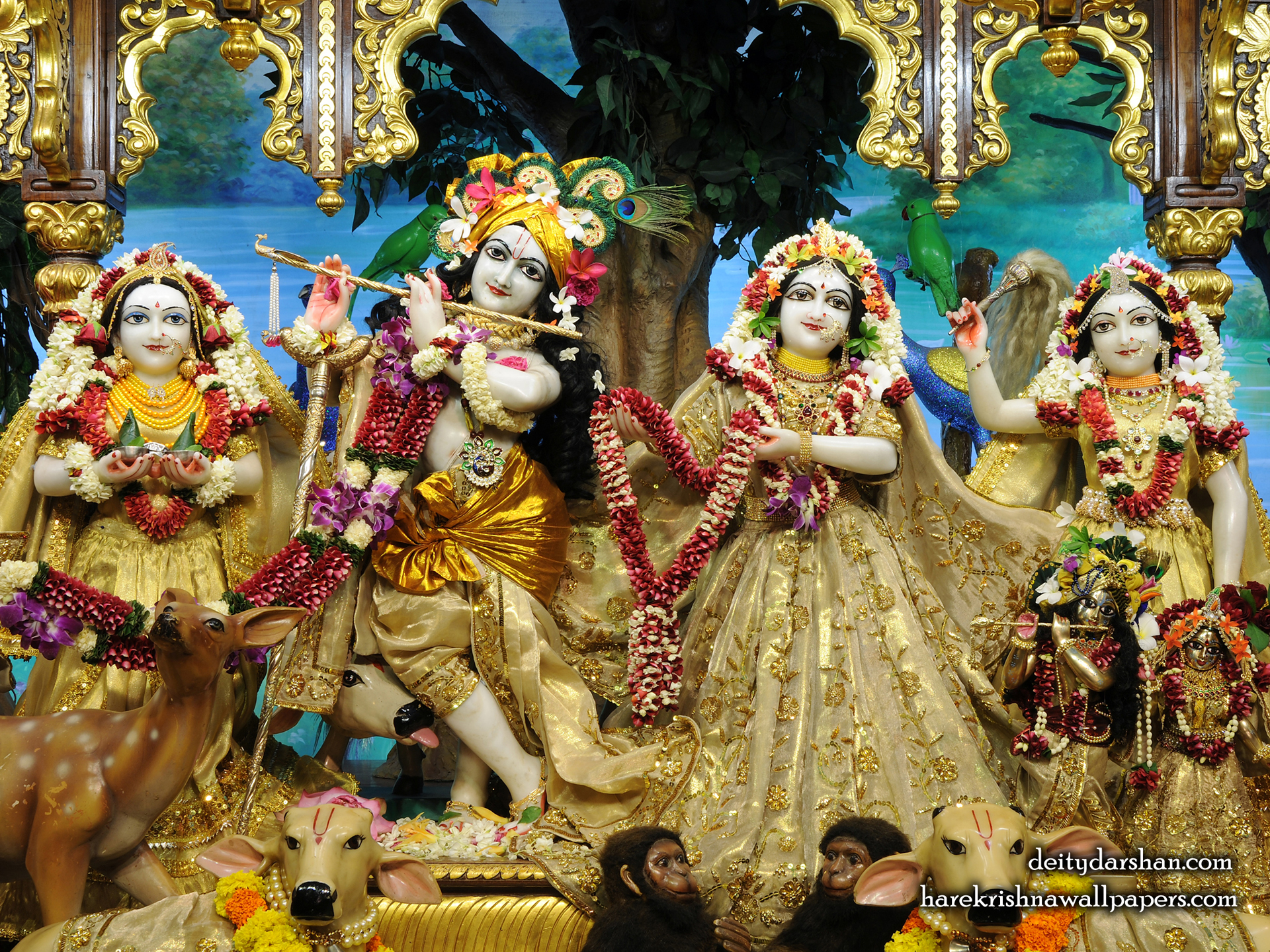 Sri Sri Radha Gopinath Lalita Vishakha Wallpaper (070) Size 1920x1440 Download