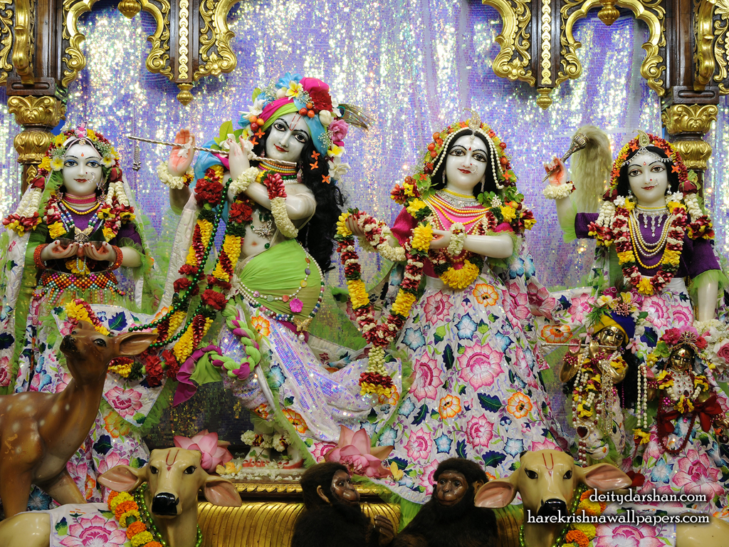 Sri Sri Radha Gopinath Lalita Vishakha Wallpaper (072) Size 1024x768 Download