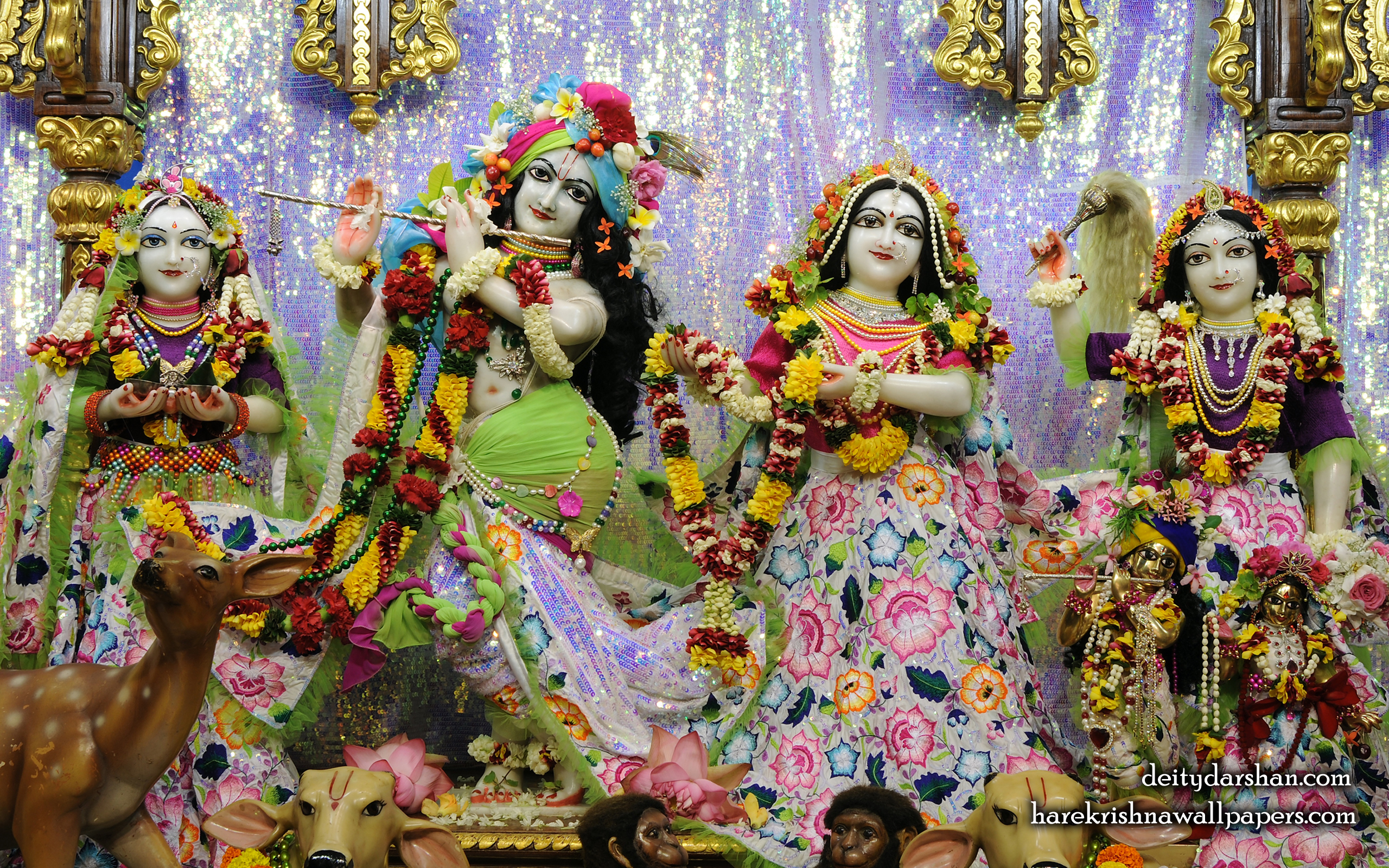 Sri Sri Radha Gopinath Lalita Vishakha Wallpaper (072) Size 2560x1600 Download