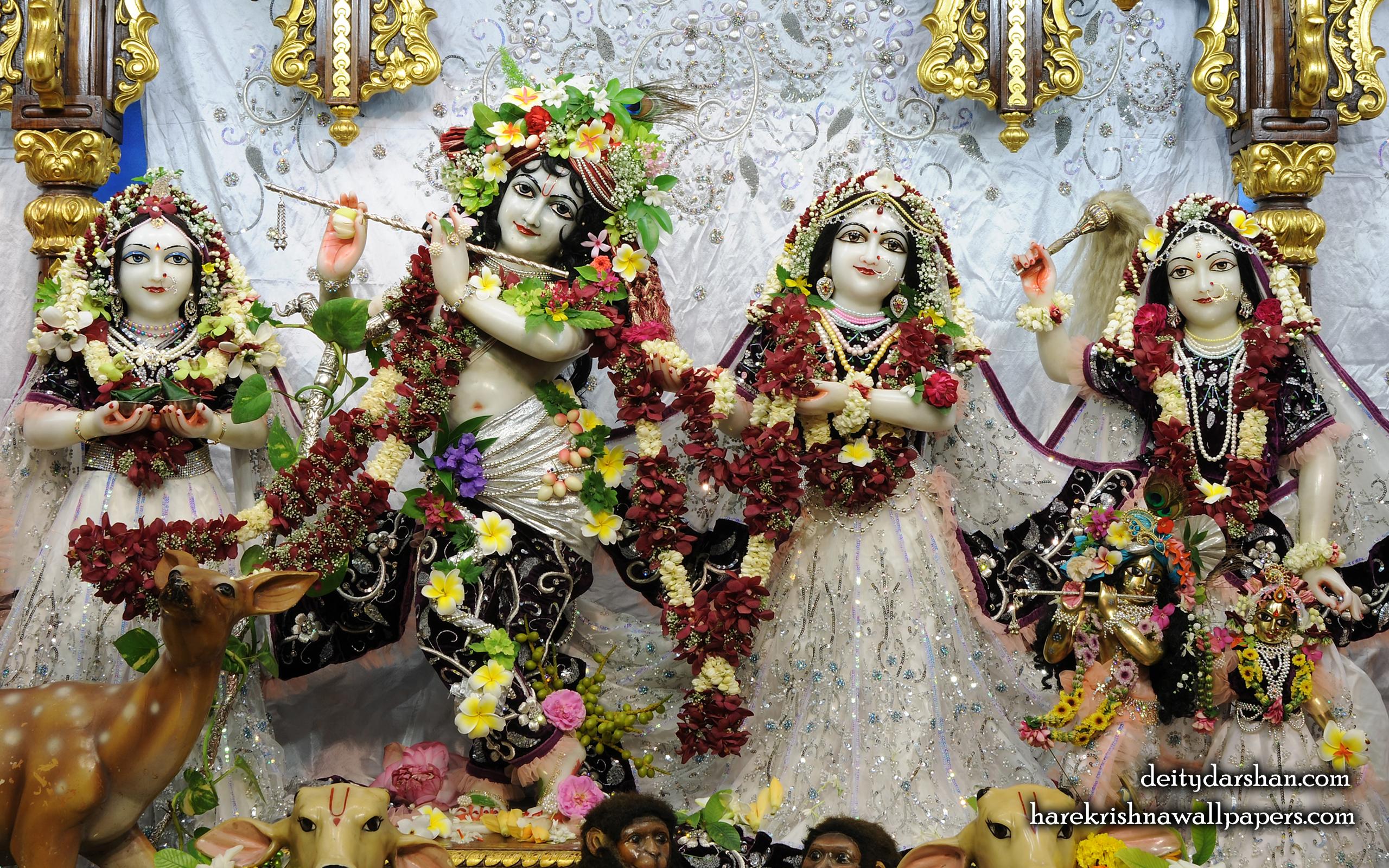 Sri Sri Radha Gopinath Lalita Vishakha Wallpaper (073) Size 2560x1600 Download