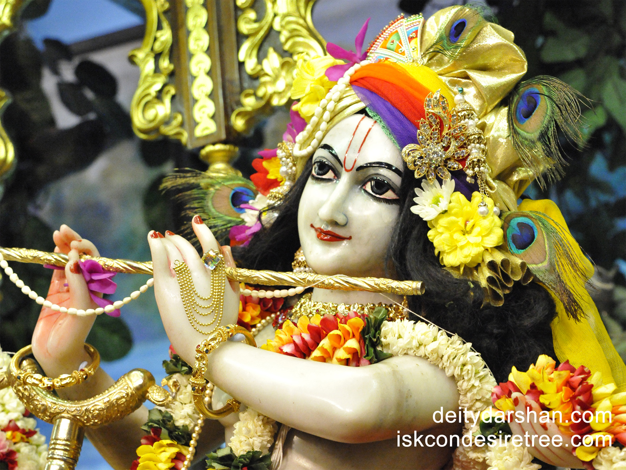 Sri Gopinath Close up Wallpaper (084) Size 1280x960 Download