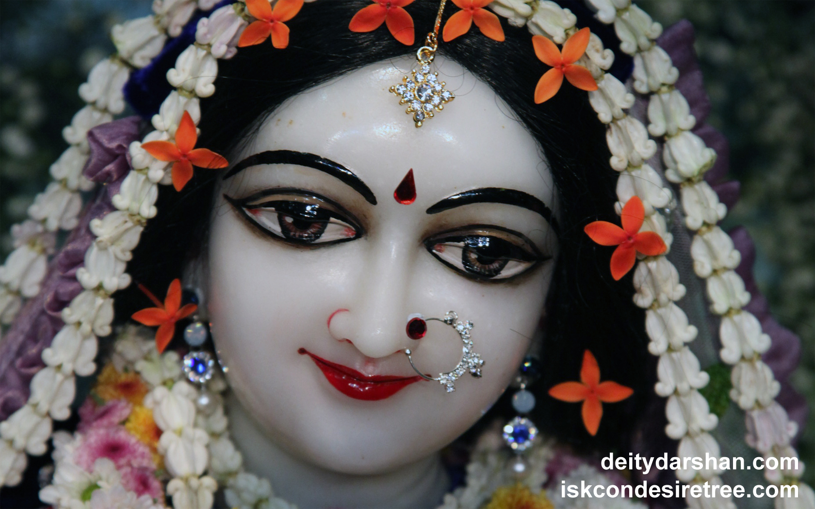 Srimati Radharani Close up Wallpaper (088) Size 1680x1050 Download