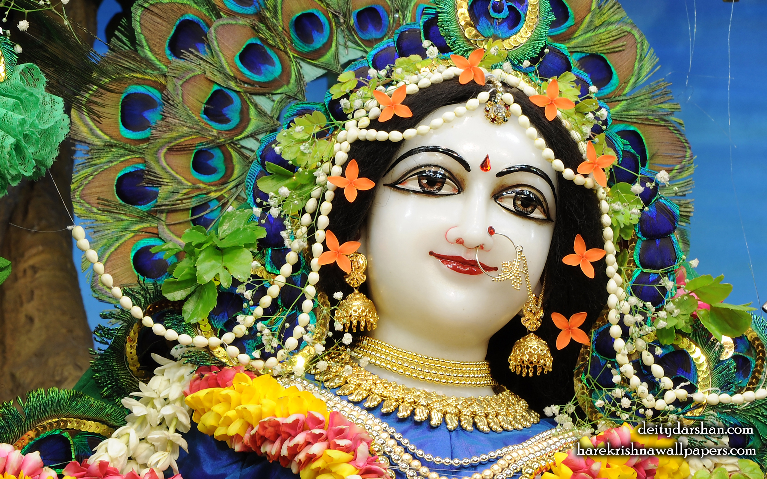 Srimati Radharani Close up Wallpaper (095) Size 2560x1600 Download