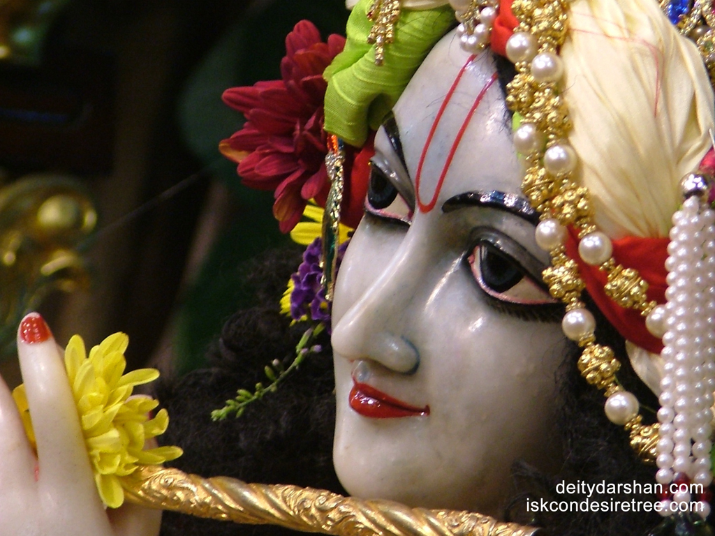 Sri Gopinath Close up Wallpaper (097) Size 1024x768 Download