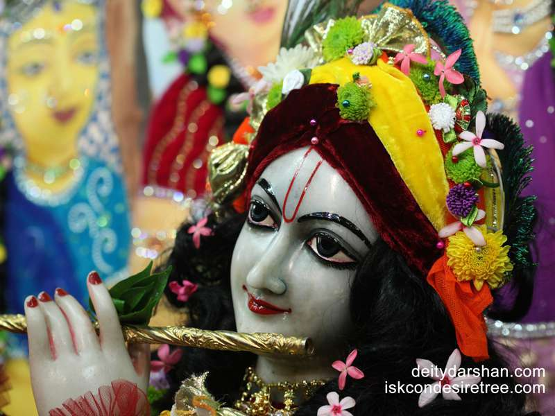 Sri Gopinath Close up Wallpaper  (103)