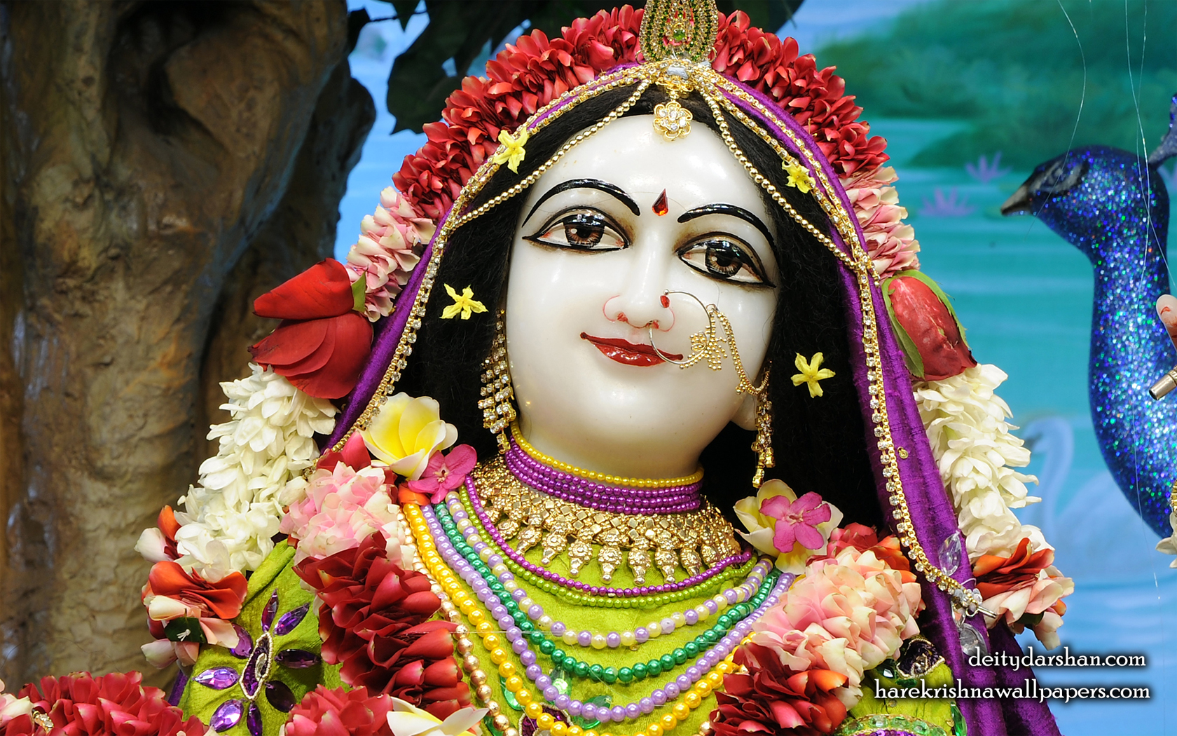 Srimati Radharani Close up Wallpaper (103) Size 1680x1050 Download