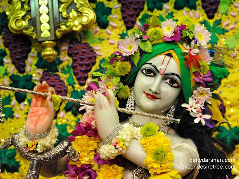Sri Gopinath Close up Wallpaper  (117)