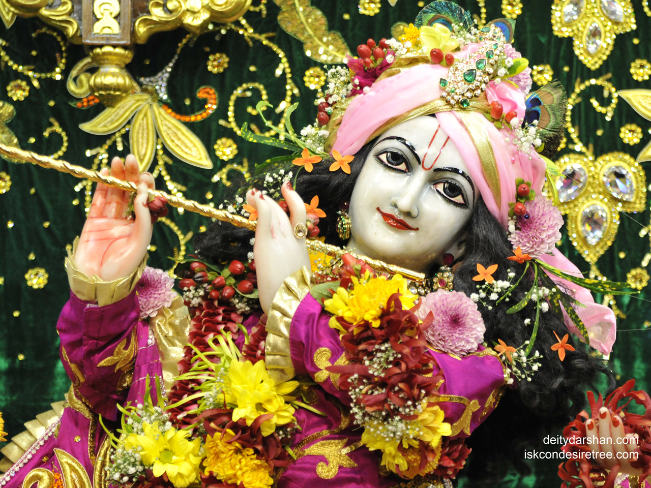 Sri Gopinath Close up Wallpaper (132) Size 1280x960 Download