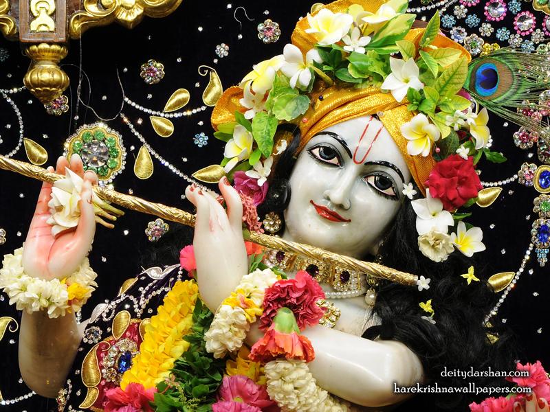 Sri Gopinath Close up Wallpaper (149) Size 800x600 Download