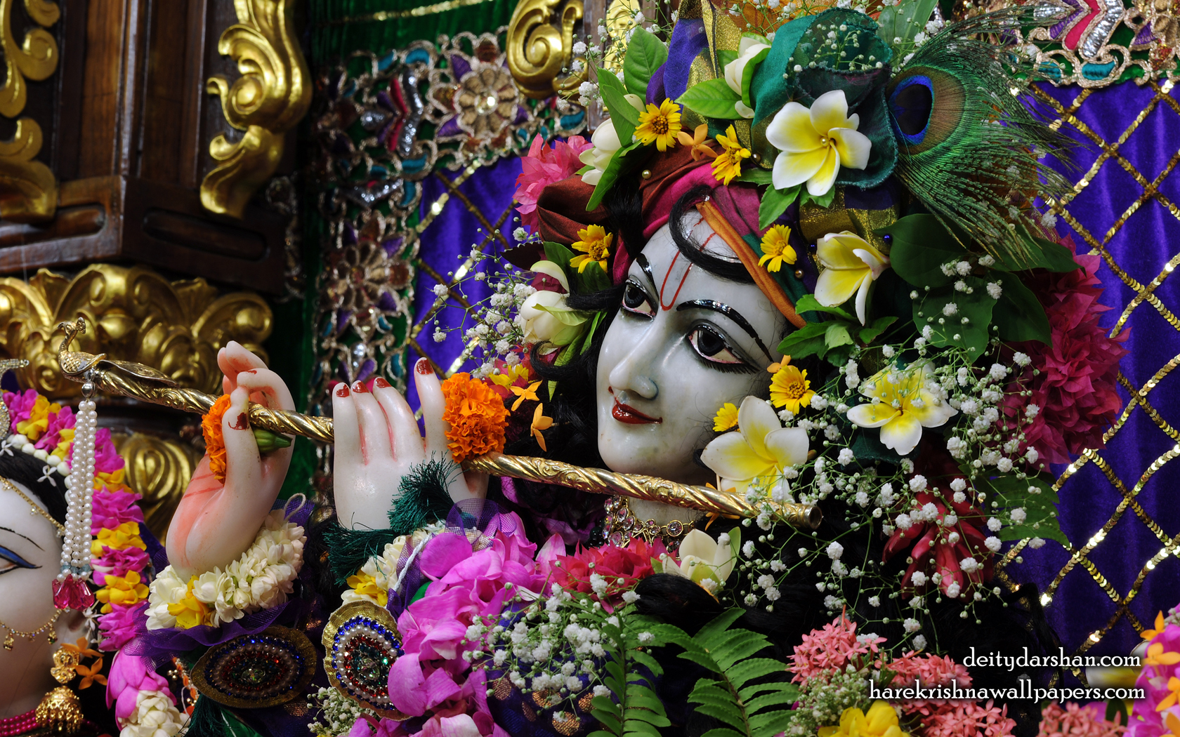 Sri Gopinath Close up Wallpaper (152) Size 1680x1050 Download