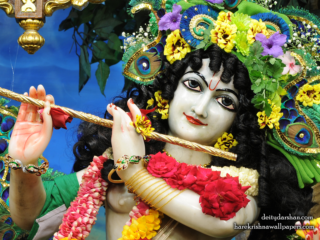 Sri Gopinath Close up Wallpaper (154) Size 1024x768 Download