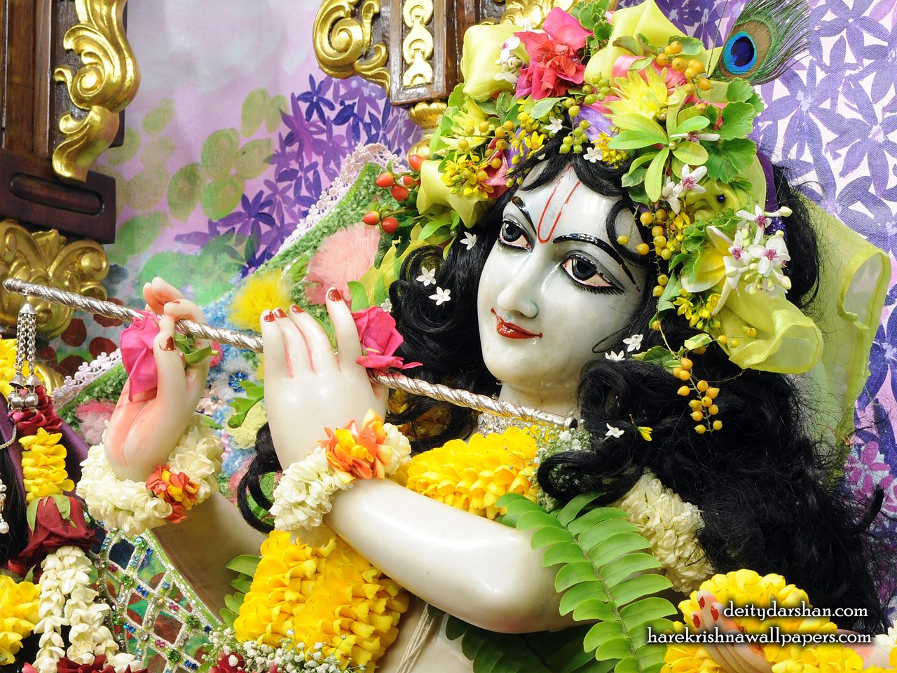 Sri Gopinath Close up Wallpaper (155) Size 1280x960 Download