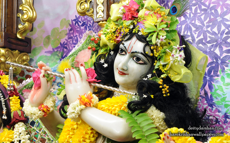 Sri Gopinath Close up Wallpaper (155) Size 1440x900 Download