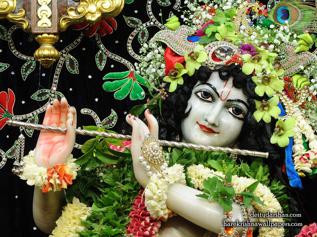 Sri Gopinath Close up Wallpaper (156) Size 1024x768 Download