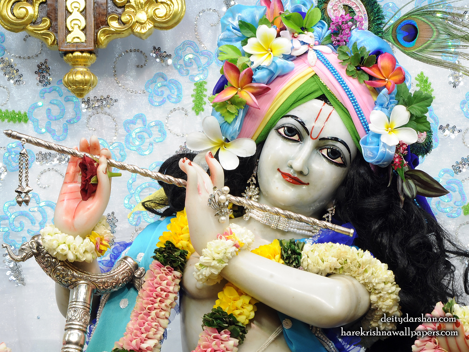 Sri Gopinath Close up Wallpaper (157) Size1600x1200 Download