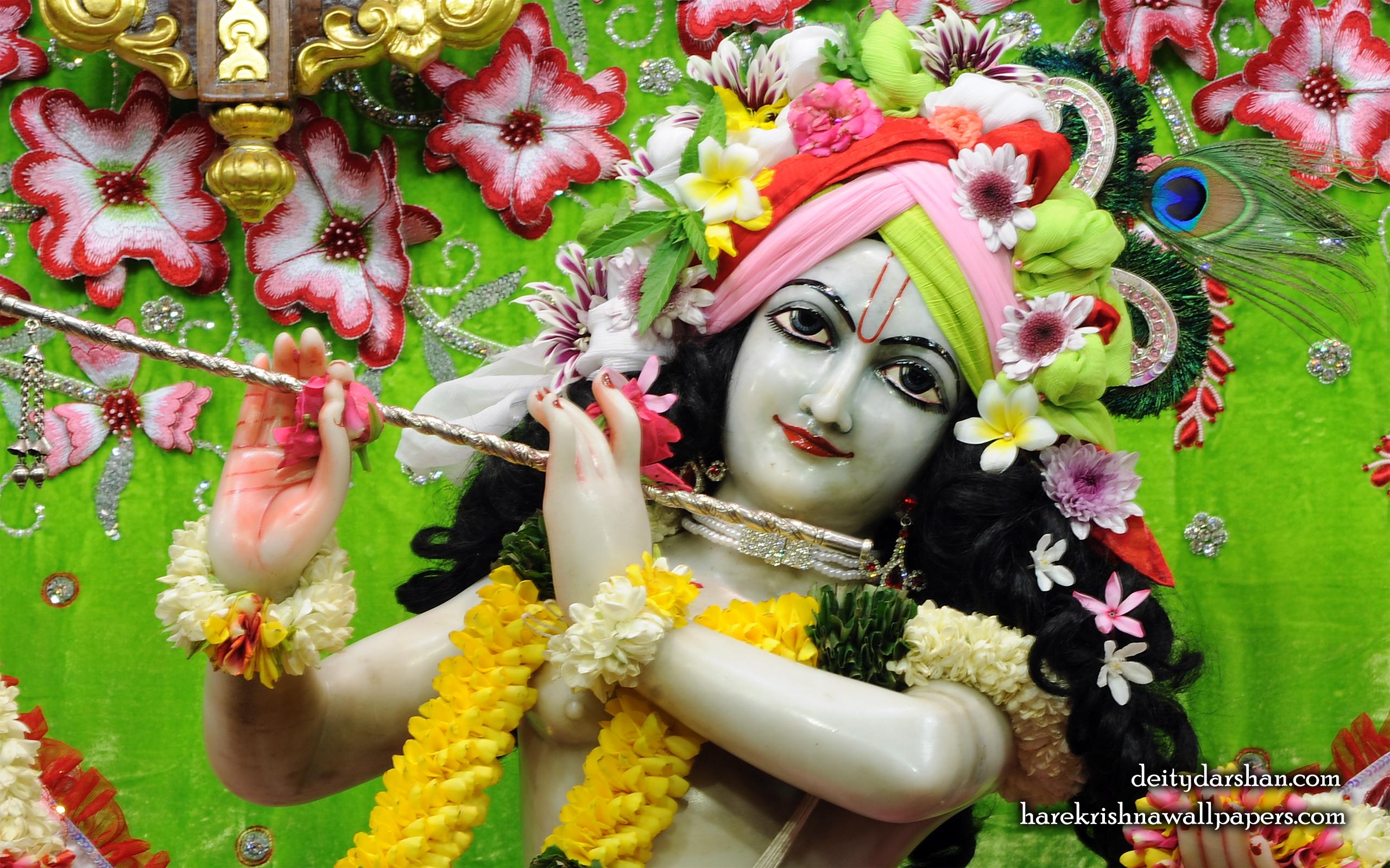 Sri Gopinath Close up Wallpaper (159) Size 2560x1600 Download
