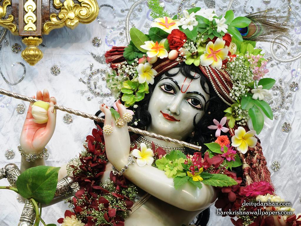 Sri Gopinath Close up Wallpaper (163) Size 1024x768 Download