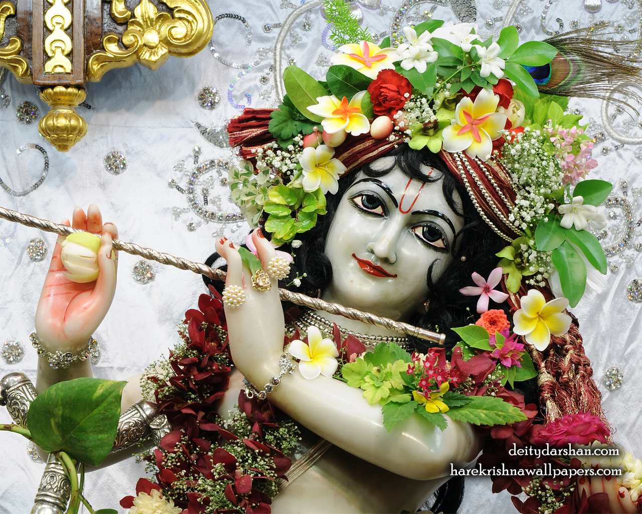 Sri Gopinath Close up Wallpaper (163) Size 1280x1024 Download