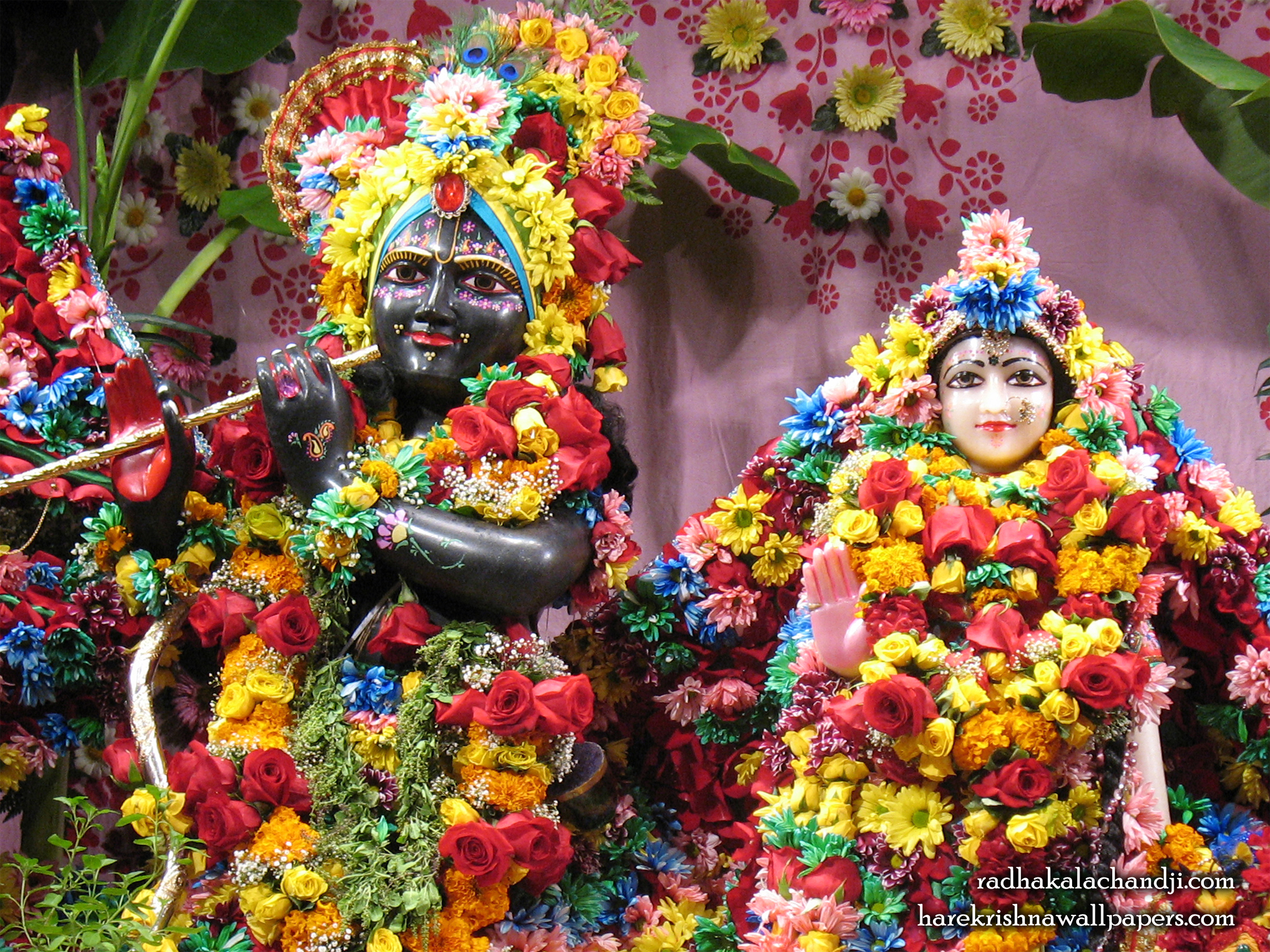 Sri Sri Radha Kalachanda Close up Wallpaper (001) Size 2400x1800 Download