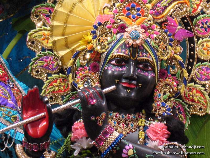 Sri Kalachanda Close up Wallpaper (002)