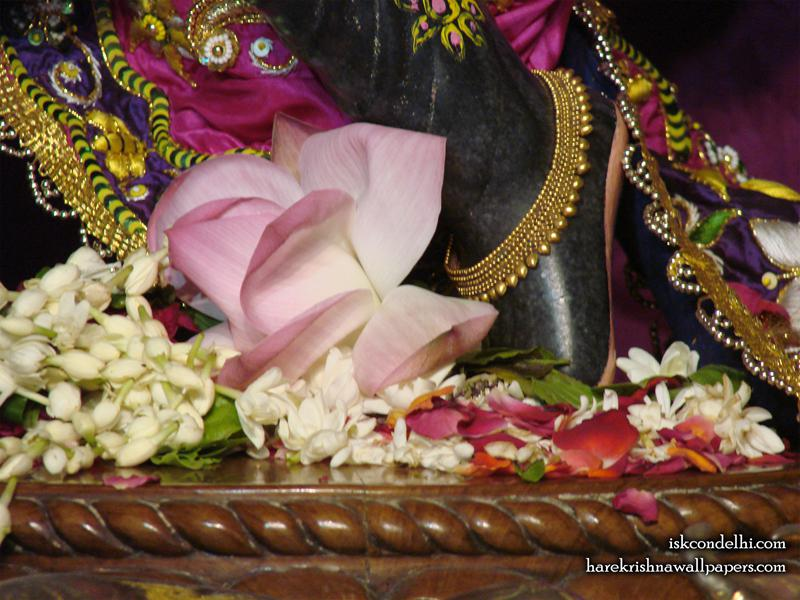 Sri Parthasarathi Feet Wallpaper (001)