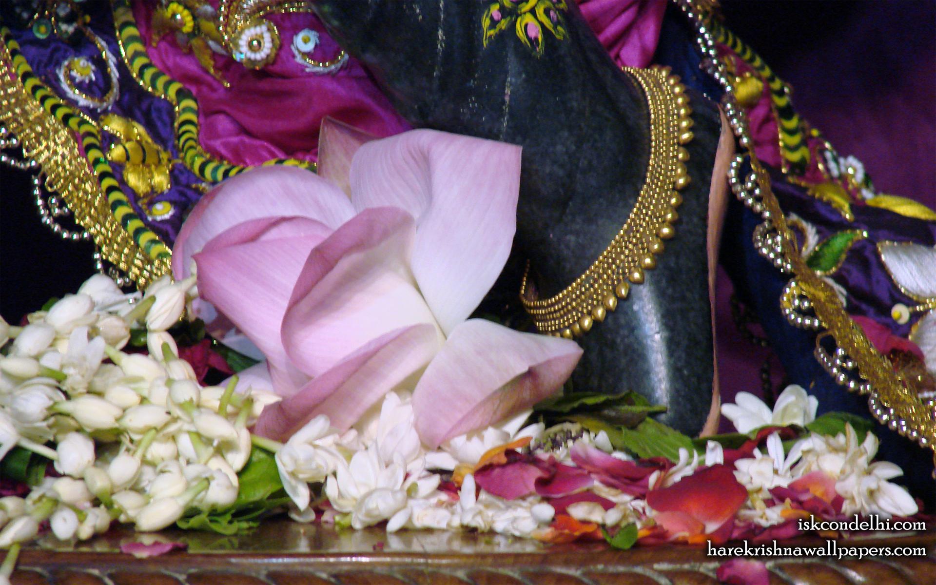 Sri Parthasarathi Feet Wallpaper (001) Size 1920x1200 Download