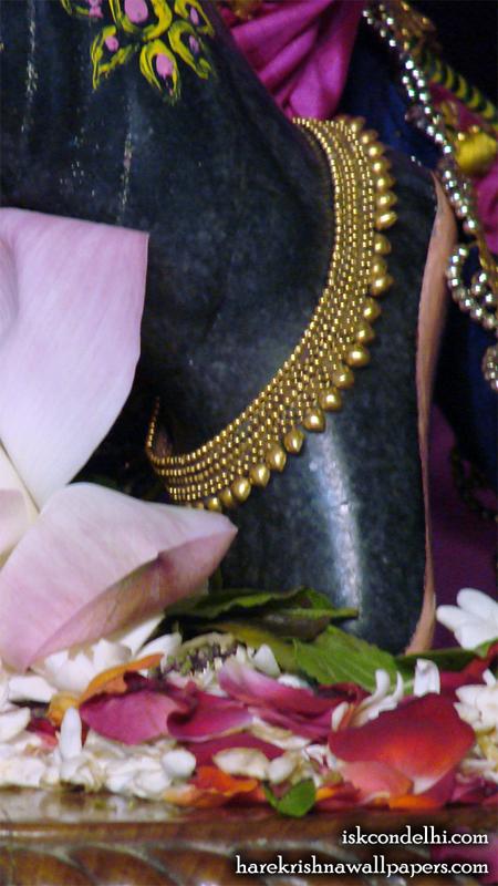 Sri Parthasarathi Feet Wallpaper (001) Size 450x800 Download