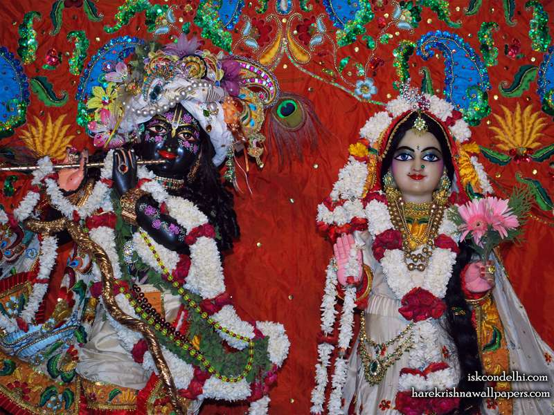 Sri Sri Radha Parthasarathi Close up Wallpaper (001)