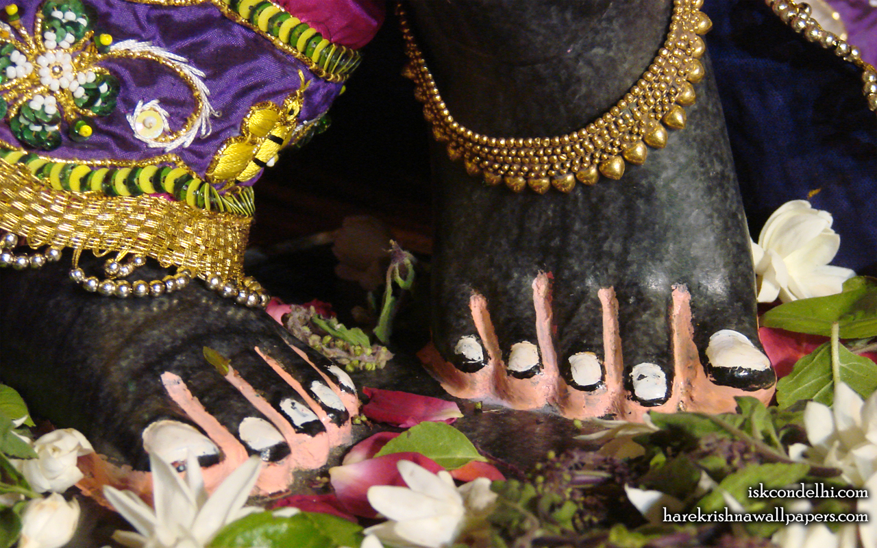 Sri Parthasarathi Feet Wallpaper (002) Size 1280x800 Download