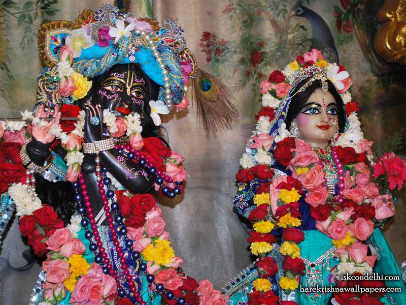 Sri Sri Radha Parthasarathi Close up Wallpaper (003)