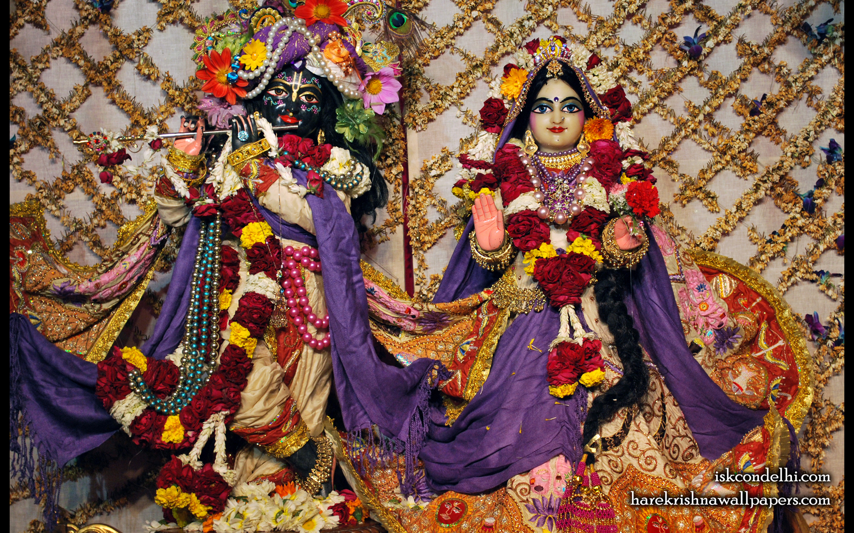 Sri Sri Radha Parthasarathi Wallpaper (005) Size 1680x1050 Download