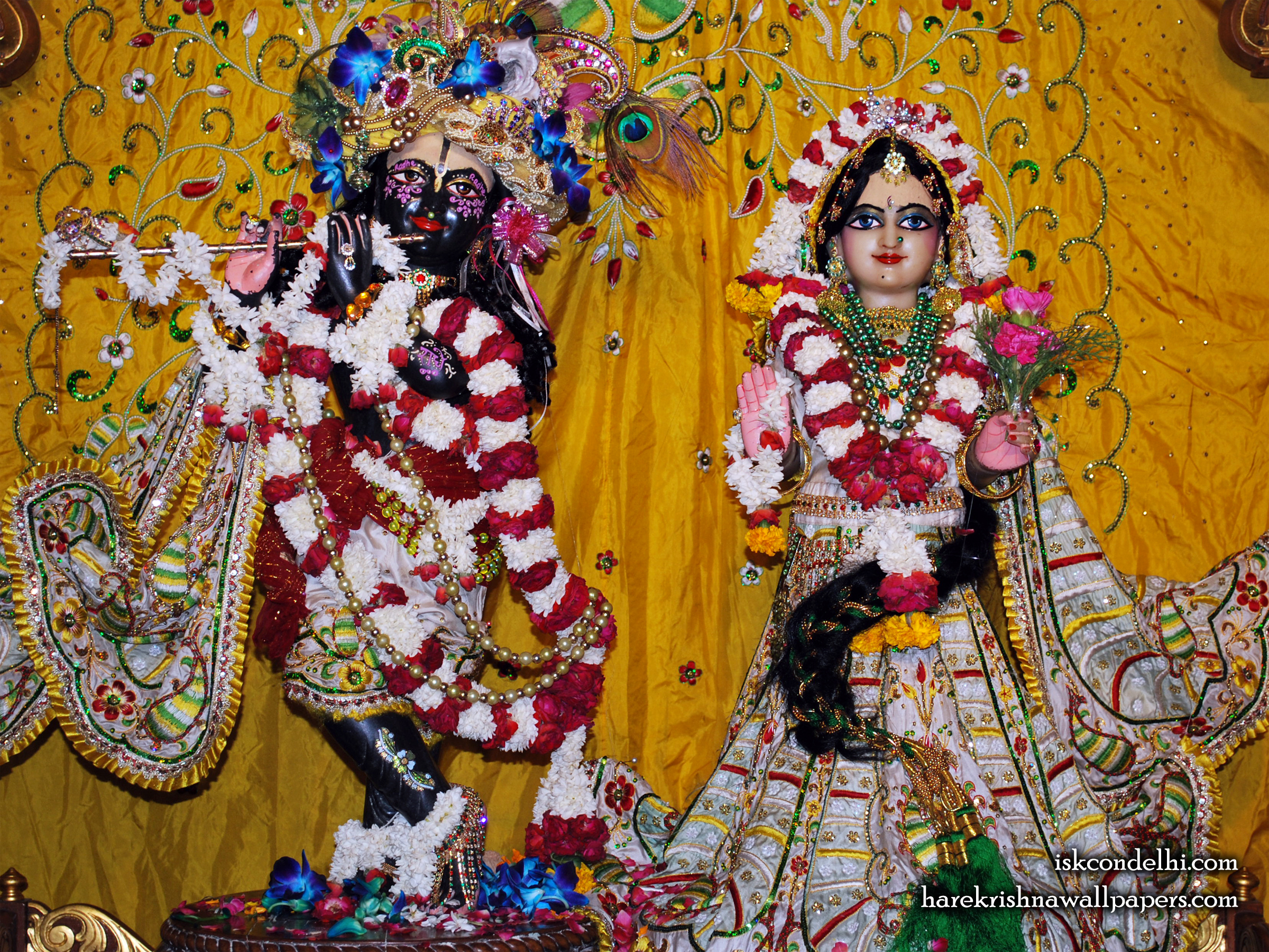 Sri Sri Radha Parthasarathi Wallpaper (010) Size 2400x1800 Download